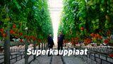 Superkauppiaat